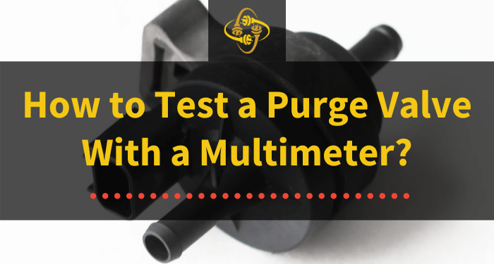 how to test a purge valve with a multimeter